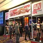 Fan Entrance AVN Expo
